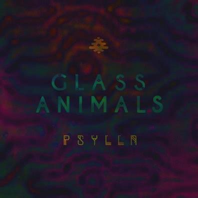 Glass Animals : Glass Animals