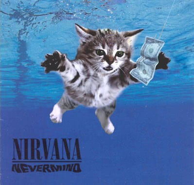 Classic Albums With Kittens