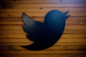 twitter black bird on wood