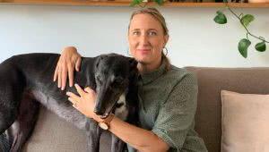 Head of Creative & Licensing Jill Stewart beggars remote control